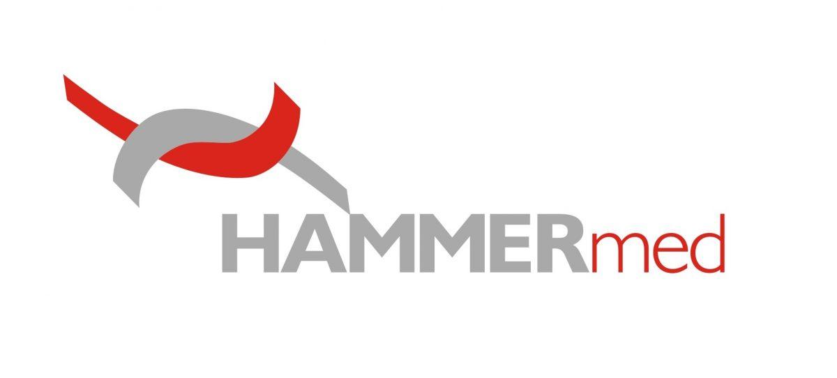 logo-hammer
